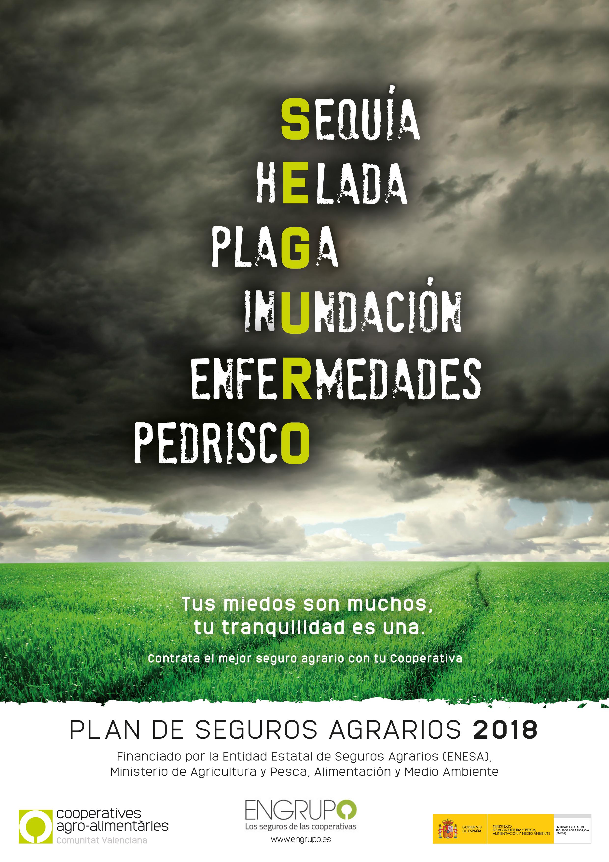 PSA Engrupo